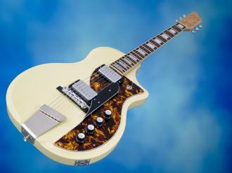 Rautia Guitars Dual Tone Style – beauty shot 1