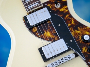 Rautia Guitars Dual Tone Style – pickups