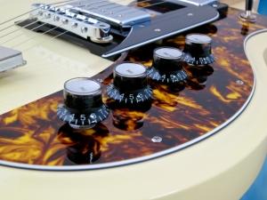 Rautia Guitars Dual Tone Style – controls