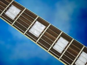 Rautia Guitars Dual Tone Style – fretboard