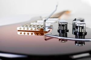 Variax Standard Guitar