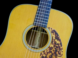 Tanglewood TW40D-AN-E – soundhole rosette