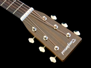 Tanglewood TW40D-AN-E – headstock