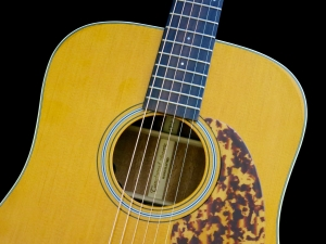 Tanglewood TW40D-AN-E – soundhole rosette 2