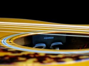 Tanglewood TW40O-AN-E – Fishman Sonitone