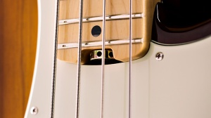 bass-feature-truss-rod