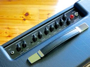 Blackstar Artist 15 – controls 1