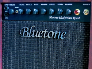 Bluetone Black Prince Reverb – control panel