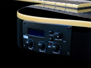 esp-ltd-tl-6n-b-band