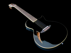 esp-ltd-tl-6n-beauty-shot-2