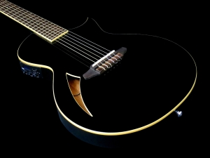 esp-ltd-tl-6n-body-beauty-2