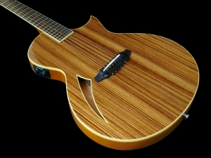 esp-ltd-tl-6z-body-beauty-2