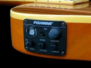 esp-ltd-tl-6z-fishman-tl3