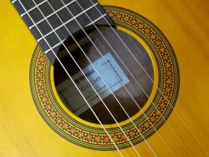 classical-guitars-intro