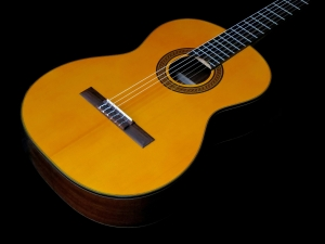 takamine-gc3-nat-body-beauty