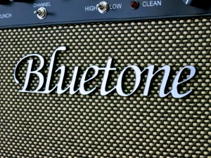 bluetone-fried-eye-22-logo