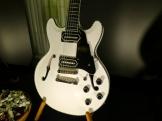 Tonefest – Salo Guitars