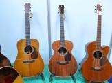 Rozawood Guitars (CZ)